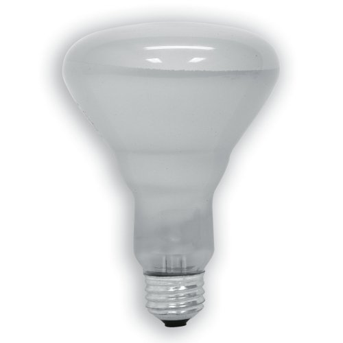 GE 20331-6-6 65 Watt Soft White Floodlight BR30 Light Bulb, 6-Pack, 610 lumens