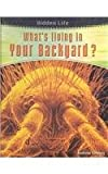 img - for What's Living in Your Backyard? (Hidden Life) book / textbook / text book