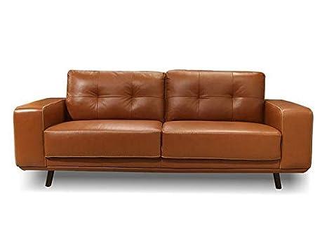 Amazon.com: Genuine Leather Sofa - Fiesta Collection (Wild ...