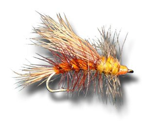 Stimulator - Orange Fly Fishing Fly - Size 14 - 6 Pack (Stimulator Dry Fly)