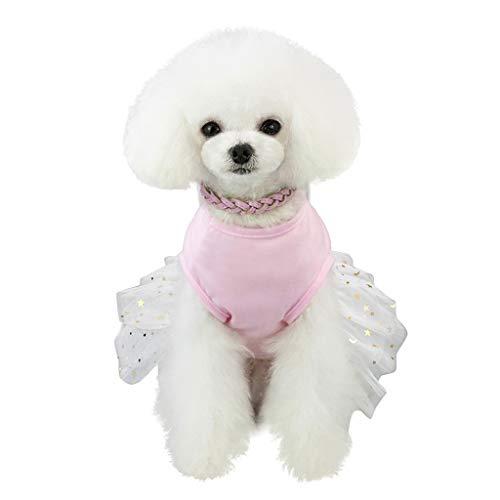 (Smdoxi pet Dog Dress rex Rabbit Skirt, Cartoon Summer Cool lace Dress, pet Clothes T-Shirt Cute Home Service Dress Shirt)