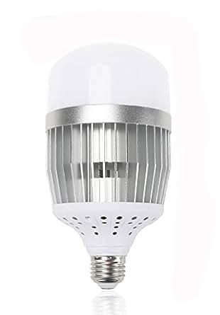 30w Led Retrofit Bulb Lerlite Medium Screw E26 Base Led