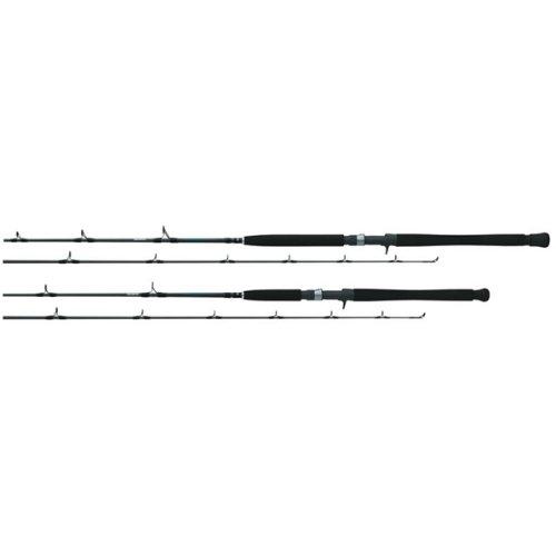Daiwa STJ66MHF Saltist Jigging Conventional Rod, 6