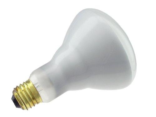 Phillips 65 Watt Incandescent Br30 Flood Light Bulb 12 Pack