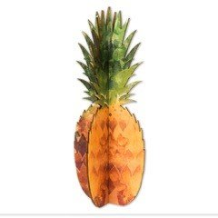Cardboard Safari Wood Pineapple Home Decor Piece | Made in the USA (Watercolor Birch) by Cardboard Safari (Image #5)
