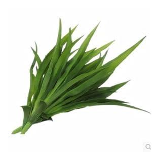FYYDNZA Gladiolus Green Leaf Grass Turf Artificial Plants Length Silk Leaves Home Decorations 65