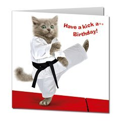 Carte Anniversaire Karate.Chaton Gris Karate Cat Carte D Anniversaire Amazon Fr