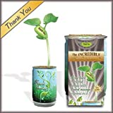 A new way to say Thank You with the Nature's Greeting Plant