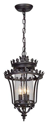 (Troy F5137: Three Light Hanger Lantern, 20.25