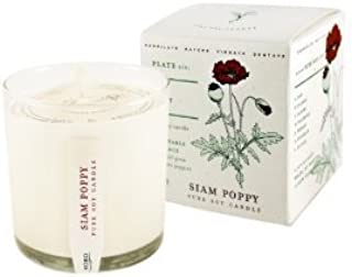 product image for Siam Poppy Soy Candle with Plantable Box