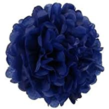 """SoNice Party 12"""" Tissue Paper Pom-Poms,Paper Flower Balls for Holiday, Anniversary, Birthday, Graduation, Wedding, Bridal & Baby Parties. Outdoor & Indoor Party Decorations. Pack of 12. (ROYAL BLUE)"""