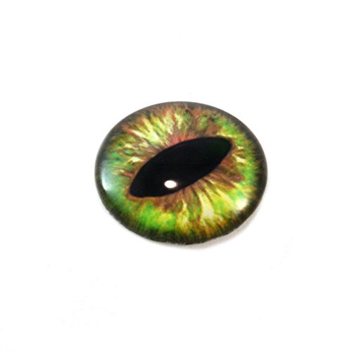 25mm Green and Brown Dragon or Cat Glass Eye Eyeball for Taxidermy Sculptures or Jewelry Making Pendants Crafts 1 Inch Art Doll Wire Wrapping DIY Flatback Cabochon