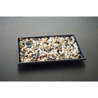 9GreenBox Bonsai Humidity Pebbles 10 Inch product image