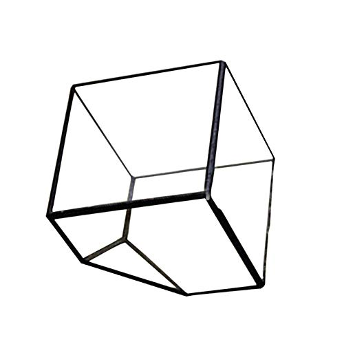 (Geometric Planter - New Square Shape Open Glass Geometric Terrarium Box Tabletop Succulent Plant Planter Fern Moss Wardian Case )