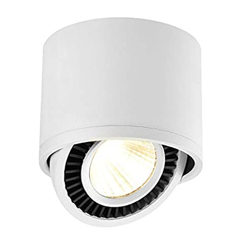 Budbuddy 15W Foco LED Lámpara de techo LED Luz de techo led Plafón con Focos Orientable 3000K COB blanco cálido Foco Giratorios Lámpara Focos de techo ...