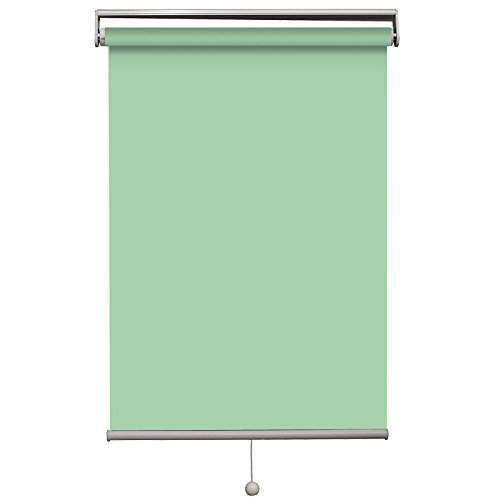 Cordless Roller Shades, Light Filtering Custom Made, Any Size from 22-90inch Wide,UV Protection Enery Saving Window Shades Blinds for Home, Hotel, Club, Restaurant 55″ W x 36″ L, Apple Green