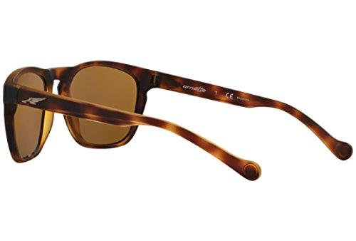 Arnette GROOVE FUZZY Sonnenbrille HAVANA AN4203 zzrgwv