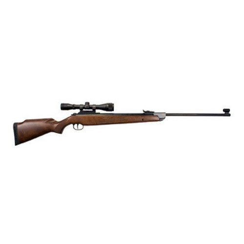 RWS Model 350 Magnum Combo-.22 Caliber Pellet Air Rifle