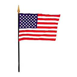 Us Miniature Flag 4 in. x 6 in.