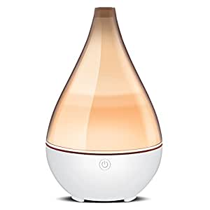 Amazon.com : InnoGear 2019 Vase-Shaped Essential Oil