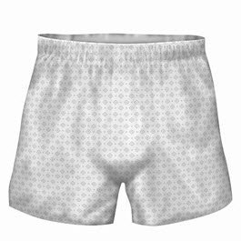 Prevail? Boxers for Men - CASE/48 (small/medium 28 - 40) by Prevail