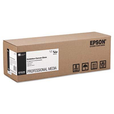 (S045242 - Epson Exhibition Canvas Gloss 17