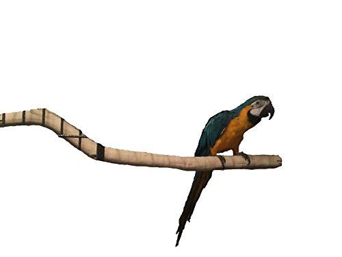 Manzanita large bird perch 24