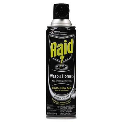 RAID WASP & HORNET SPRAY 14 OZ