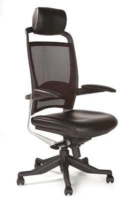 Chellgrove DPA Fulkrum Ergonomic Mesh Office Chair