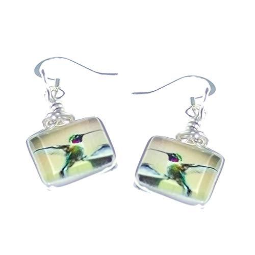 (Hypoallergenic Hummingbird Earrings on Handmade Petite Square Glass)