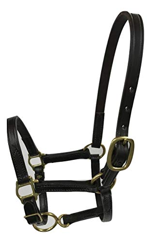 Tack Shack of Ocala Leather Mini, Suckling Size Horse Halter, Brown with Solid Brass Hardware
