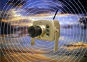 Birdhouse Spy Cam BCAMHEW Hawk-Eye Wireless Spy Camera (Set of 1) by Birdhouse Spy Cam