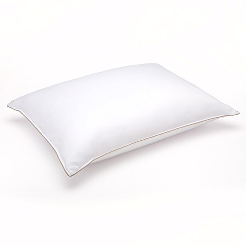 Clearance Sale – Soft White Goose Down Hypoallergenic Pillow – Luxury Home Catalog Collection – Perfect for Stomach Sleepers (Standard 20