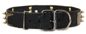 Dean and Tyler ''BEAUTY AND THE BOLD'', Dog Collar with Brass Plate and Nickel Spike - Black - Size 22-Inch by 1-1/2-Inch - Fits Neck 20-Inch to 24-Inch