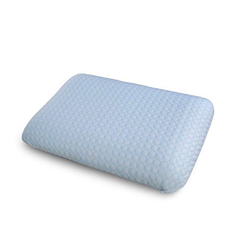 Ambesonne Orthopedic Visco Foam Pillow, Good Night Sleep Pads for Side Sleepers and Back Pain Two Shams with Microfiber and Polyester Removable and Machine Washable, 30