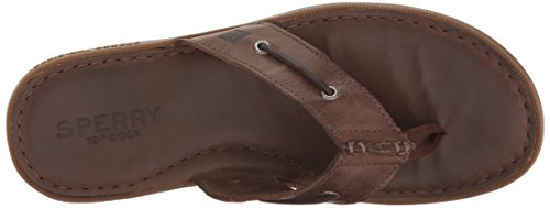 Sperry Top-Sider Mens a/o Sandal Thong (Box) Flip Flop Dark Brown