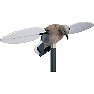 best Mojo Outdoors Voodoo Dove reviews