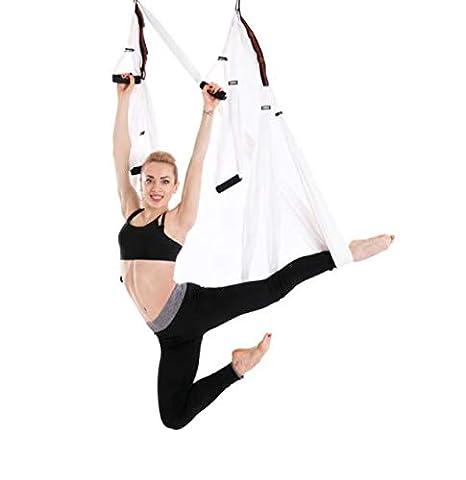Amazon.com : 933 Aerial Yoga Hammock Yoga Studio with ...