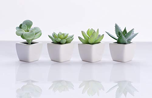 Artificial Succulent Plants [SET OF 4]| Fake Succulents Faux Cactus Plant Decoration for Home, Office Desk, Table, Shelf, Mantle - Absolutely ZERO Maintenance - Small and Mini for Decor Comes Potted