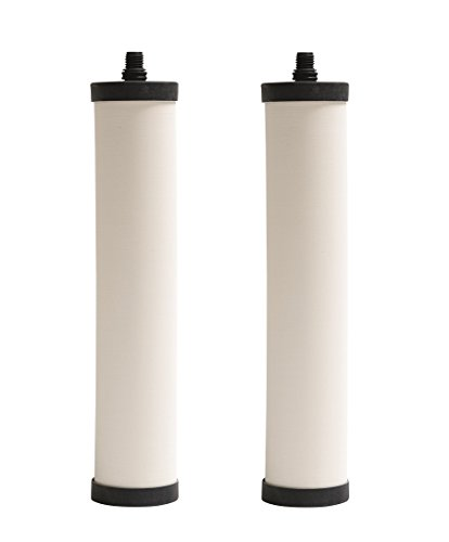 Franke FRC06-2PK Undersink Water Filtration Filter for FRCNSTR, Chlorine, 2-Pack by Franke