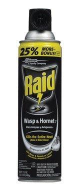 17.5 Ounce Aerosol (Raid House & Yard Wasp & Hornet Spray Multiple Insects Aerosol 17.5 Oz)