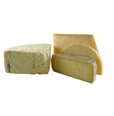 Fromage Marquis Italian Cheese Sampler Assorted - 1.9 lbs - Sottocenere, Taleggio, Asiago, Mozzarella + gift