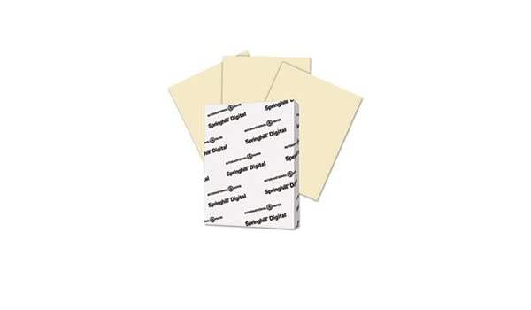 Bee Paper Vellum Bristol Pack 22-1//2-Inch by 28-1//2-Inch 100 Sheets per Pack