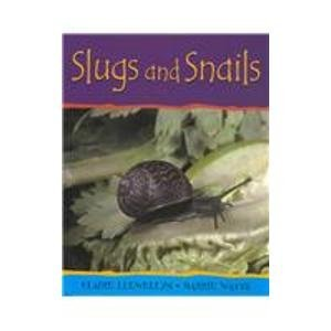 Slugs and Snails (Minibeasts)
