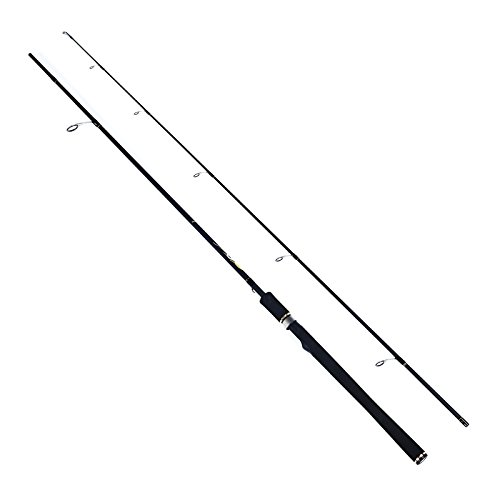Cheap FISHINGSIR Dreamcaster Spinning Fishing Rods – Ultra-Light Weight Medium and Medium Heavy Portable Spinning Rods