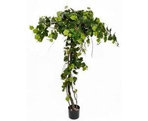 Parra con aproximadamente 440 hojas 10 uvas arreglo for Plantas decorativas amazon