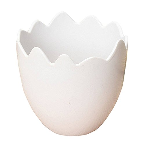 - SODIAL Egg Shaped Flower Plant Pot Container Planter Holder Home Office Garden Decor White
