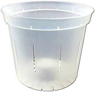 3 Slotted Clear Orchid Pots – 3 Pack Crystal Clear