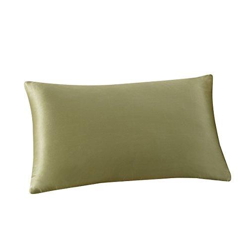 (ALASKA BEAR - Natural Silk Pillowcase, Hypoallergenic, 19 Momme, 600 Thread Count 100 Percent Mulberry Silk, Queen Size with Hidden Zipper(1, Sage) )