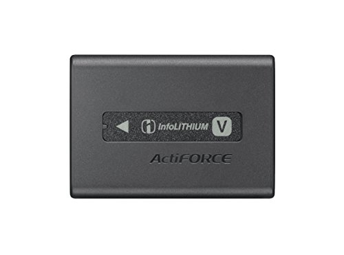 Sony NPFV100A Rechargeable Battery Pack (Black) by Sony